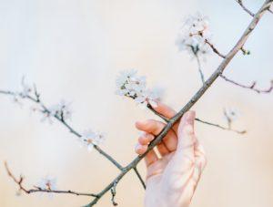 Conseils pour s'alléger et privilégier le minimalisme