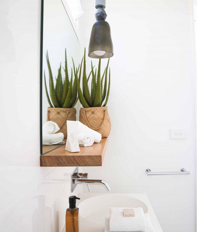 Soin naturel à l'aloe vera dans sa salle de bain